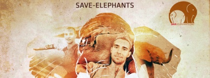 foto:  Save-Elephants
