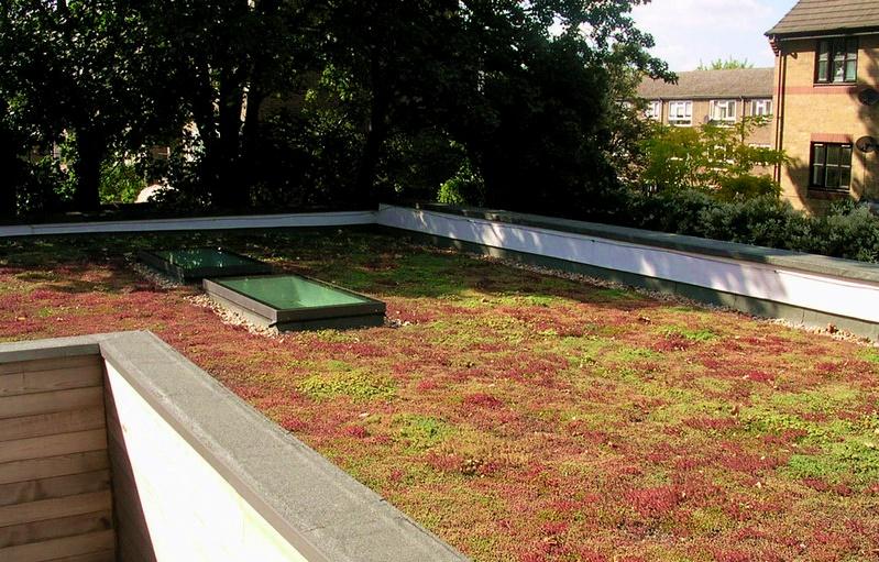 Tábor jako jedno z prvních měst v ČR udělá zelenou střechu na panelovém domě