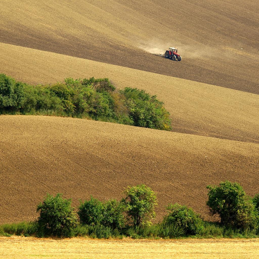 Zemědělská krajina.